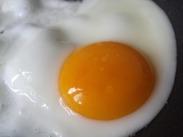 egg-806081_960_720
